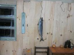 鮭板.jpg
